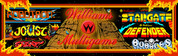 Multi Williams Multigame Video Arcade Marquee