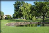 Emerald Greens Golf Club: 2-Some ($10 per player)