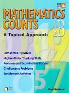 Mathematics Counts 4B, a Topical Approach, workbook