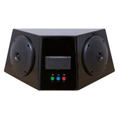 RHOX Universal Audio Center With Power Center for Golf Carts