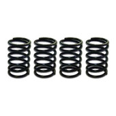 Honda 24HP Upgraded Valve Springs