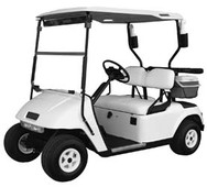EZGO TXT/Medalist Sun Top Canopy (Champagne) 1994-09