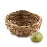 Miniature Natural Bird Nests {Package of 12}