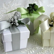 Berry and Ribbon Favor Box Kit (Set of 10)