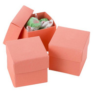 DIY Coral Two-Piece Favor Box (Set of 25)