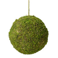 Moss Hanging Ball (5 Inch)