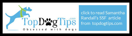 top-dog-tips-click-here-to-read-452-x126-px.jpg
