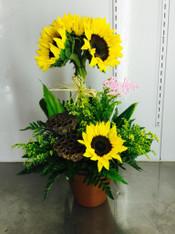 Topiery sunflower