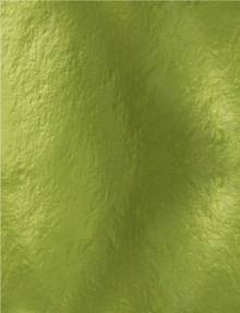 Tonic Studios Mirror Glossy Cardstock 8.5'X11' 5/Pkg-Holly Green