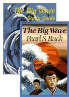 Big Wave Guide/Book