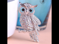 Pin, Owl Rhinestone Clear