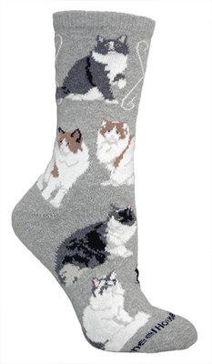 Ragamuffin Cat Socks