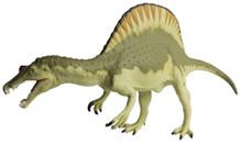 Carnegie Museum of Natural History Spinosaurus