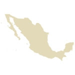 Mexico Antique Maps Icon