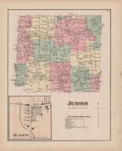 Junius New York Antique Map Nichols 1874