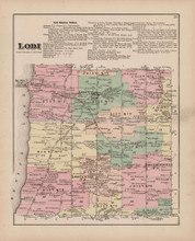 Lodi New York Antique Map Nichols 1874