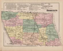 Romulus New York Antique Map Nichols 1874