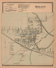 Holley New York Antique Map Beers 1875