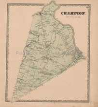 Champion New York Vintage Map Beers 1864