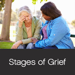 Stags of sympathy grief