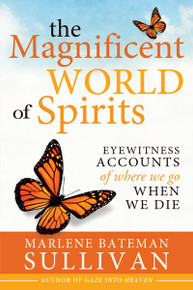 The Magnificent World of Spirits: Eyewitness Accounts of Where We Go When We Die  (Paperback) *