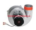 70-101087-81 Rheem Furnace Draft Inducer Motor