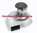 Trane Draft Inducer Blower Motor BLW01437