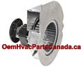 Goodman Fasco Draft, Inducer Motor A157, B2959005, RFB185