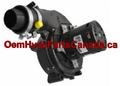 Genuine York Inducer Motor 32434558000