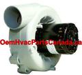 AIC18219M Olsen Inducer Motor 20082, 27612, 11051403, FB-RFB200