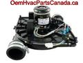 AO Smith Inducer Motor, 2 STG JE1D016N Motor Assembly HC27CB121