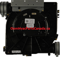 Carrier Draft Inducer Motor Assembly 340793-762