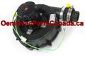 Draft Inducer Fasco A180 Canada