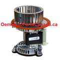 Carrier 48SS400626 Furnace Draft Inducer Venter Motor