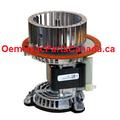 Carrier Bryant Payne JAKEL J238-15015103 Inducer Motor