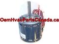 ICP Heil Tempstar 1/2 HP 115v MOTOR 1009052 HQ1009052EM