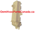319830-402 Carrier condensate Drain Trap