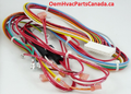 318973-401 Carrier Wiring Harness