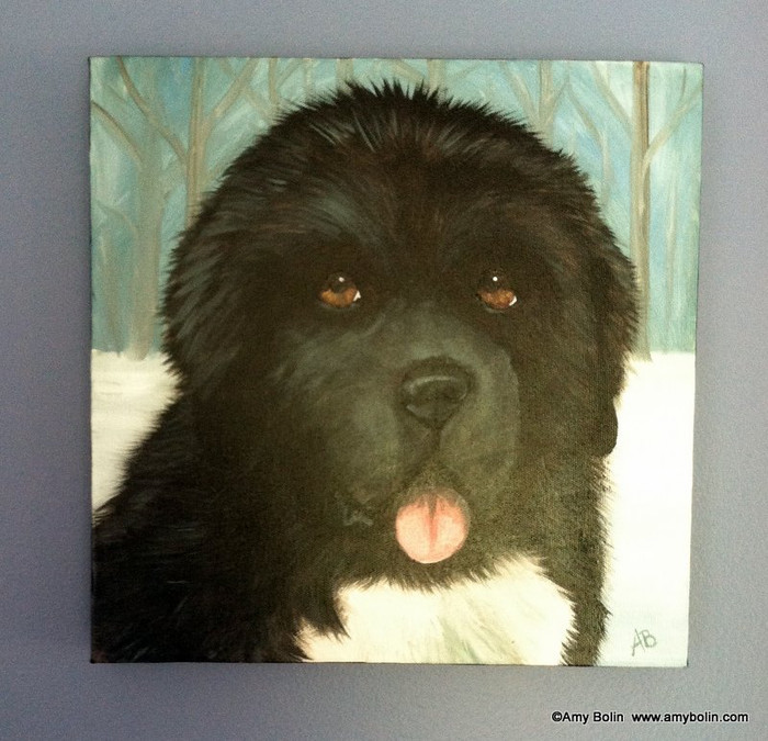"""Puppy Eyes"" Black Newfoundland Dog Original ART Acrylic Painting on Canvas 12"" square"
