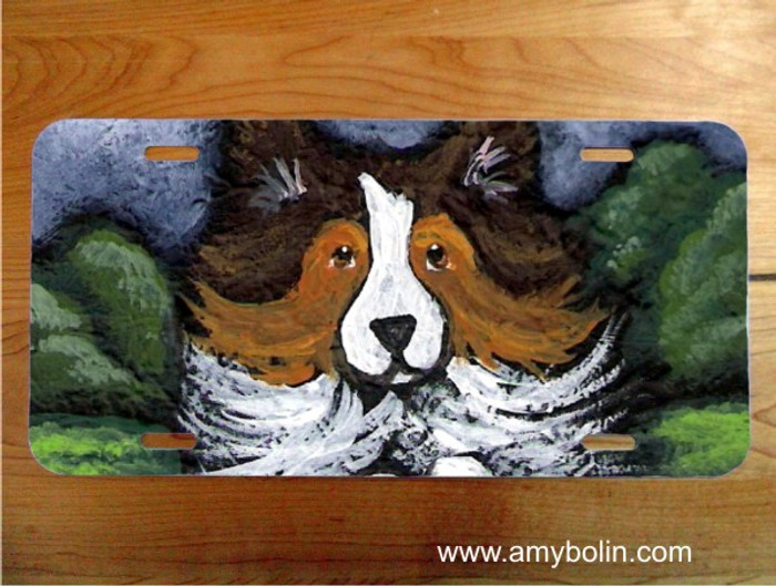 LICENSE PLATE · AGILITY QUEEN · SABLE SHELTIE · AMY BOLIN