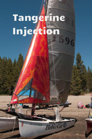 Jib Sail to fit Hobie® 18 SX - Radial Injection Laminate
