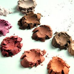 PERFECT Blush Artist Palette- (10)