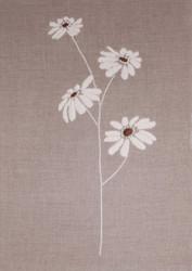 Design Works - White Daisies