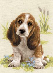 RIOLIS - Basett Hound Puppy