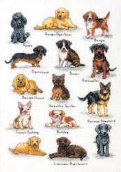 Dimensions - Dog Sampler