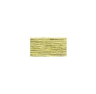 DMC #130A-3013 Light Khaki Green Linen Embroidery Floss
