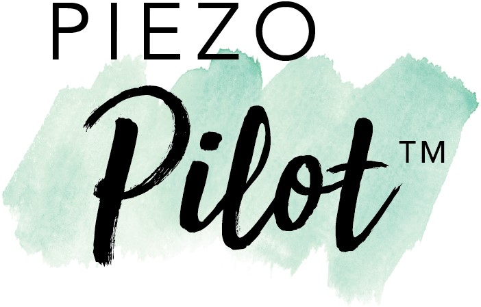Piezo-Pilot-Logo
