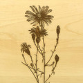 Flowers Aster1 10x16 Grooved Cutting Board Maple Made in USA