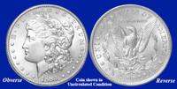 1883-P Morgan Silver Dollar - Collector's Circulated Condition