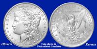1886-P Morgan Silver Dollar - Collector's Circulated Condition